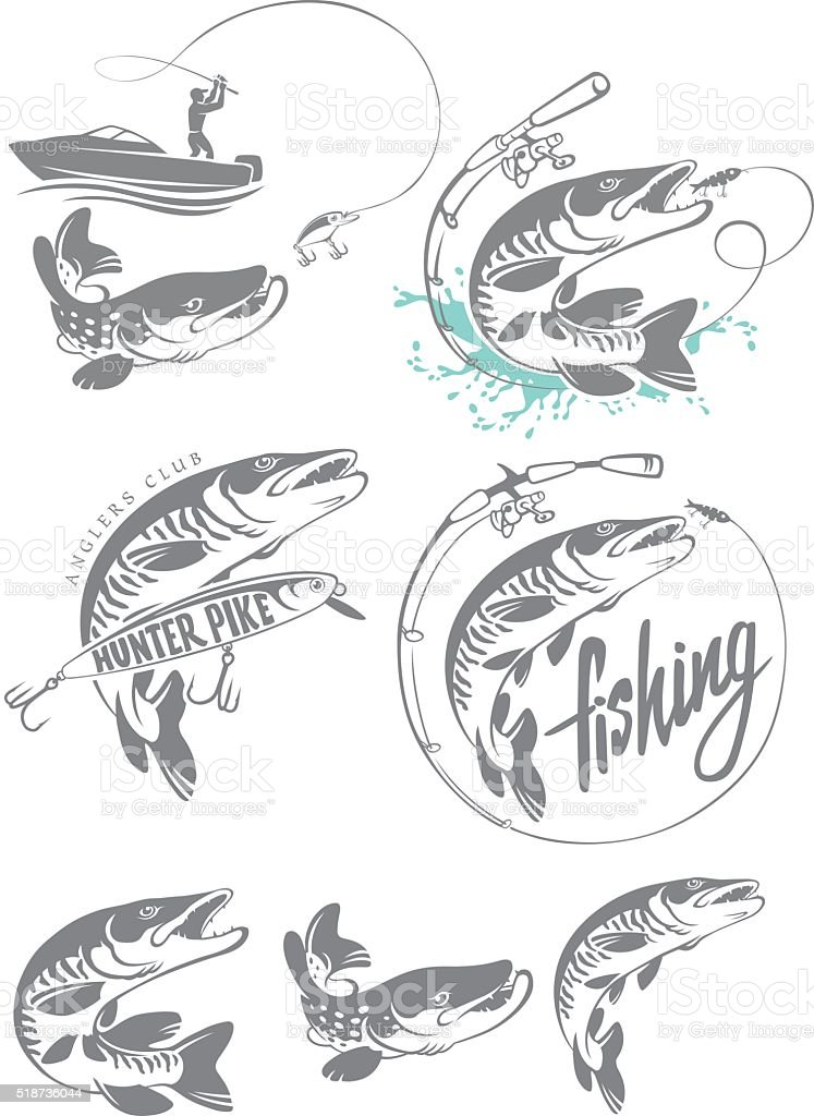 pike fish logo vector art illustration