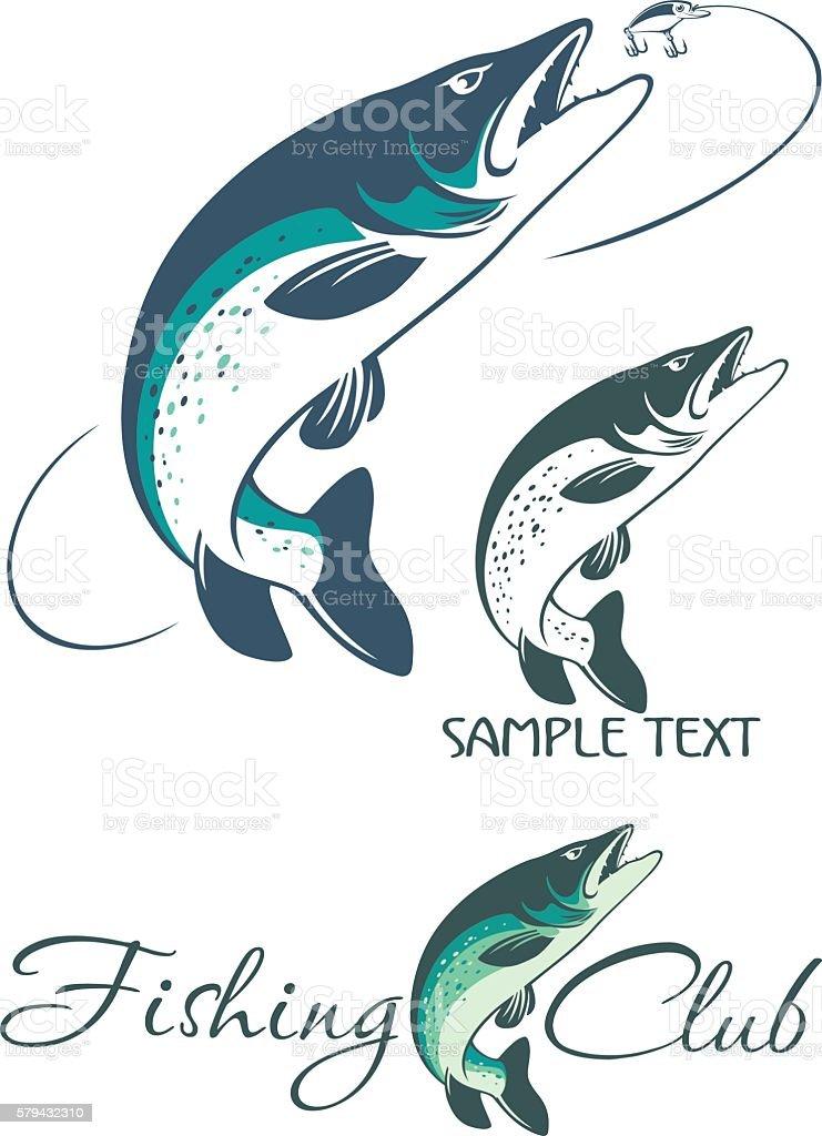 pike fish vector art illustration
