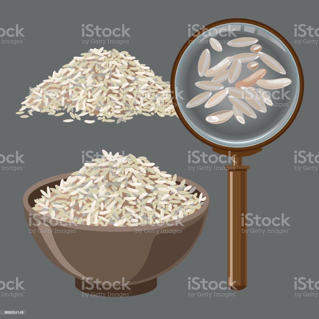 Pile of rice and magnifying glass vector art illustration