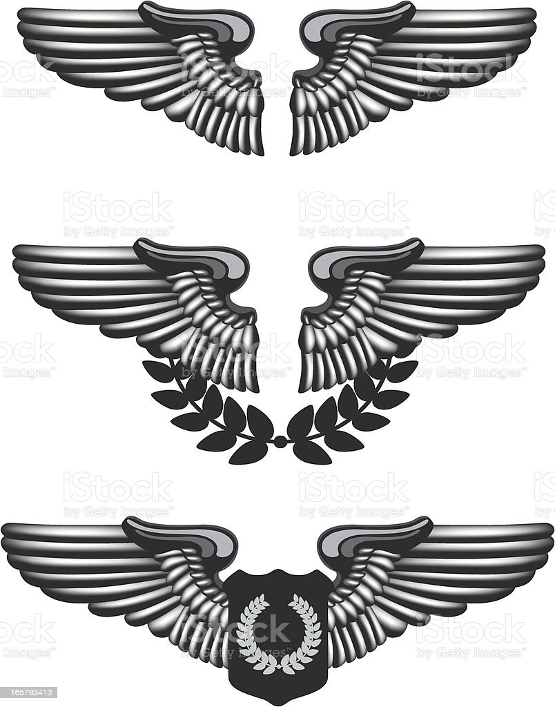 Pilot Badge royalty-free stock vector art