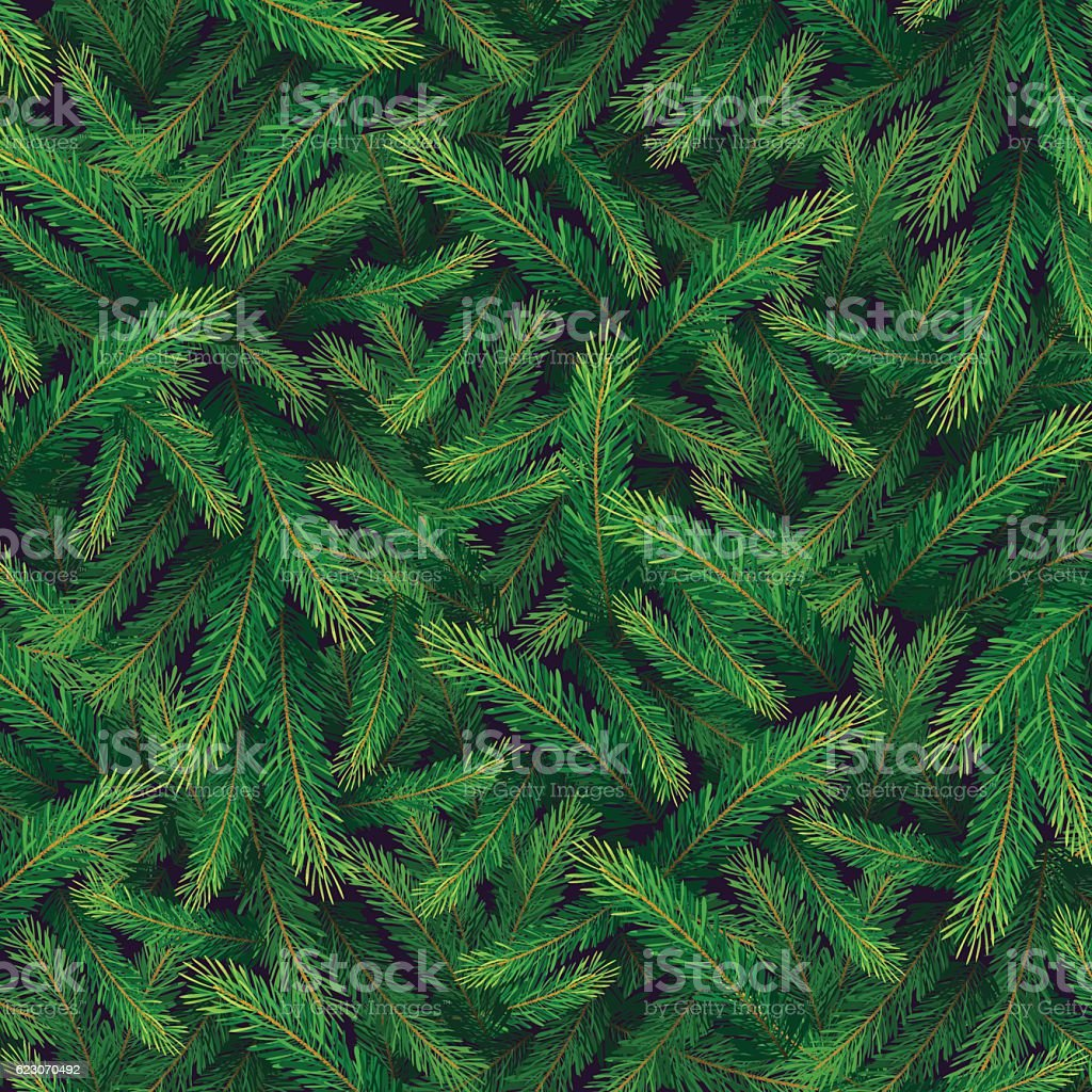 pine branch card vector art illustration