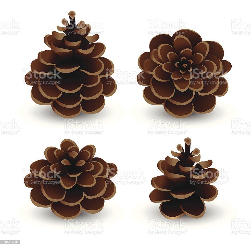 Pine Cone Set royalty-free stock vector art
