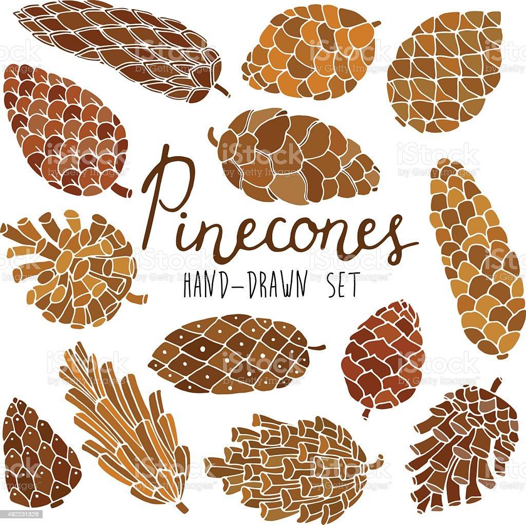 Pine cones set vector art illustration