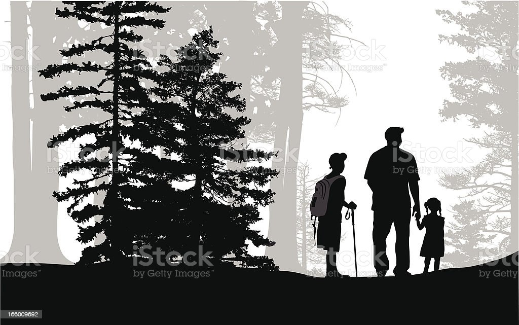 Pine Forest royalty-free stock vector art