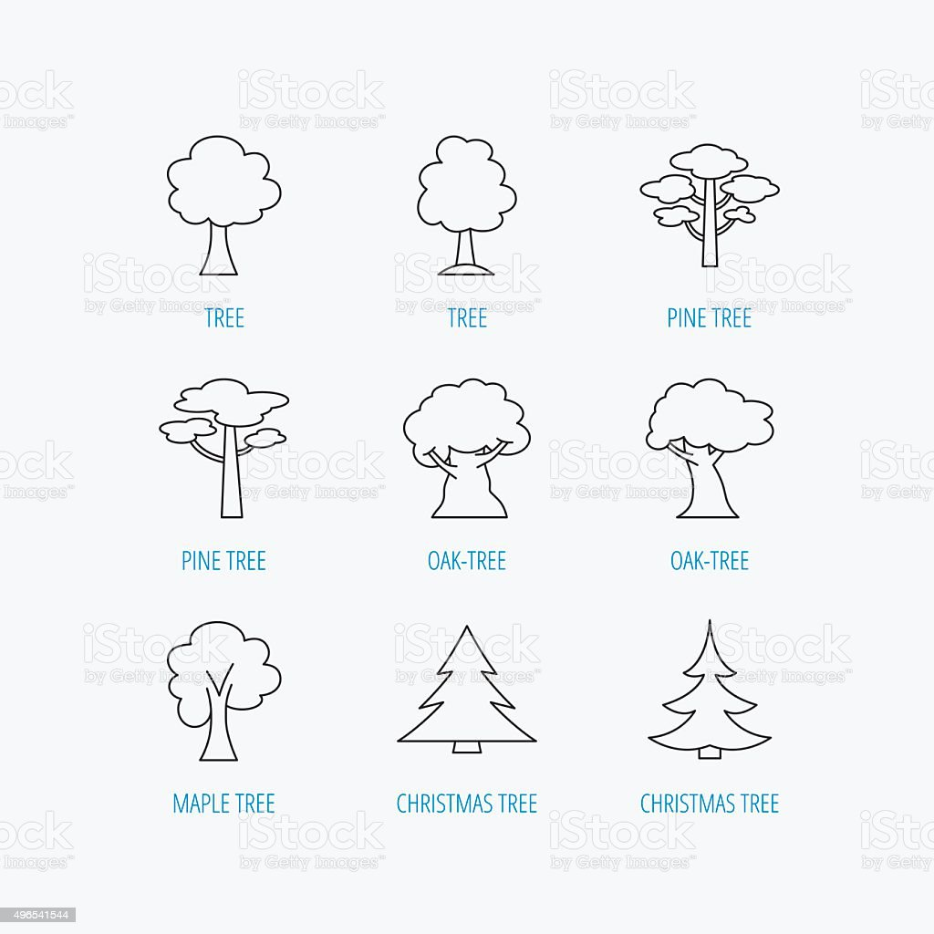 Pine tree, maple and oak icons. Christmas tree. vector art illustration