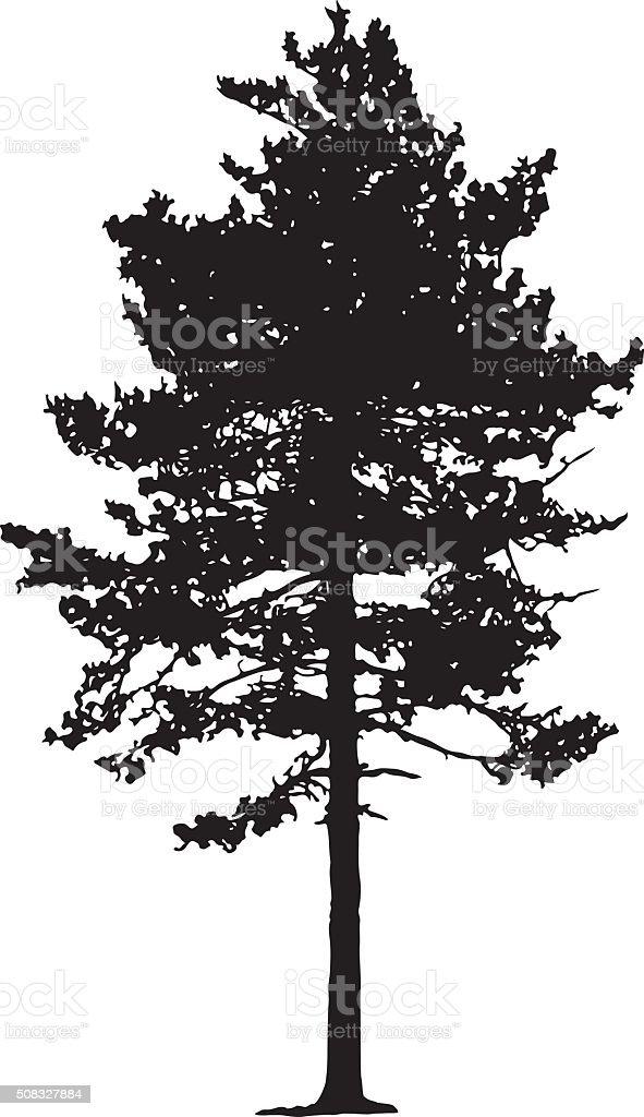 pine tree silhouette stock vector art 508327884 istock vector pine tree images vector pine tree images
