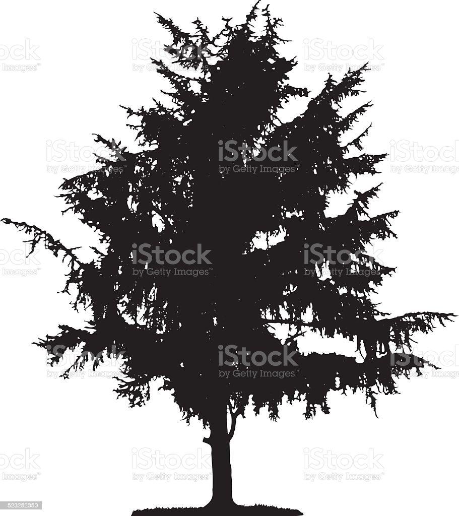 Pine Tree Silhouette vector art illustration
