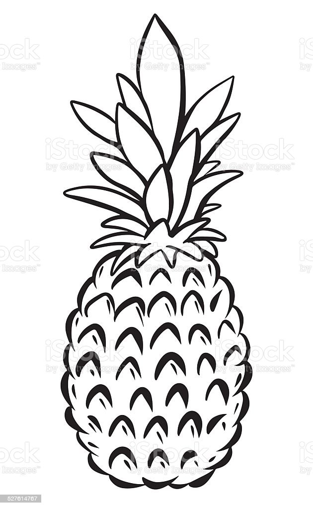 Pineapple Black Sketch Cartoon Hand Drawn Illustration
