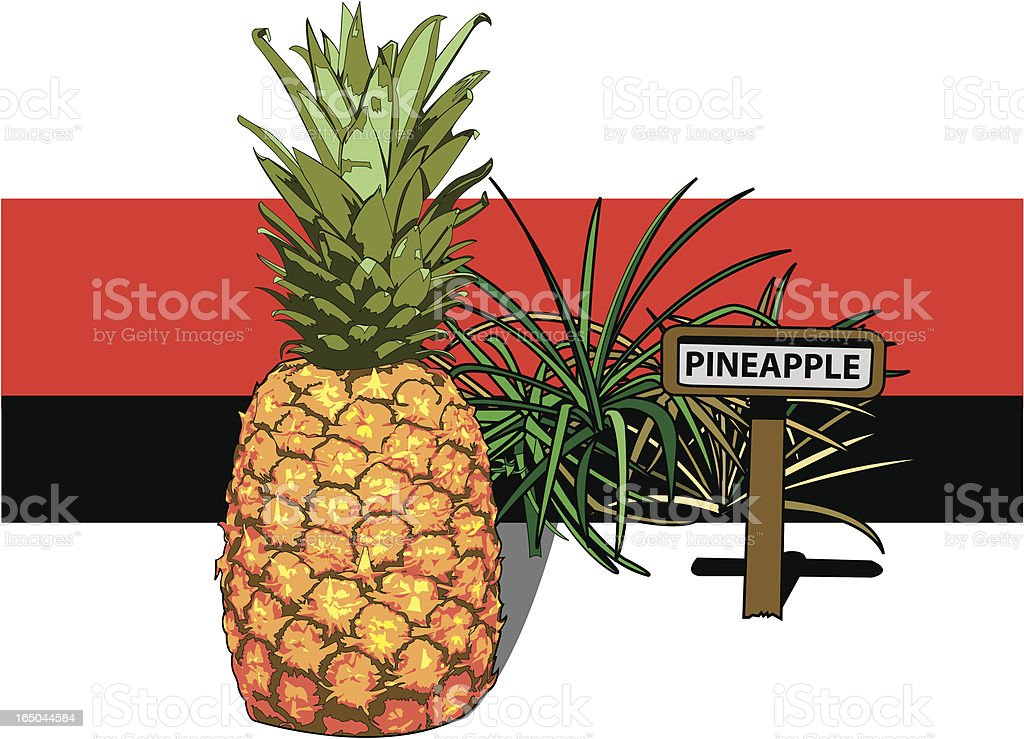Pineapple Farm royalty-free stock vector art