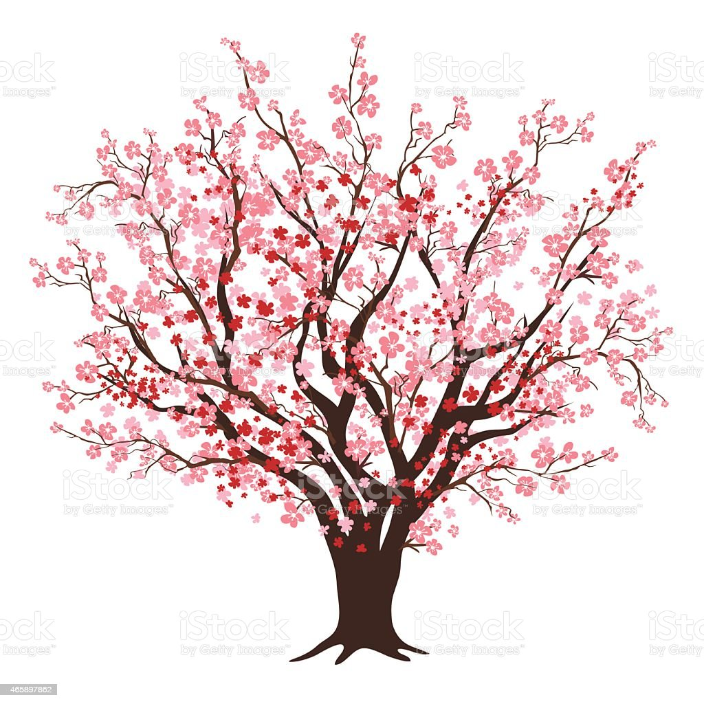 Pink And Red Cherry Blossom Tree In Full Bloom vector art illustration