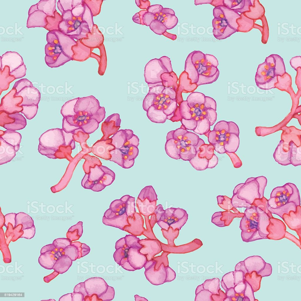 fleur rose bergenia crassifolia motif uniforme illustration de