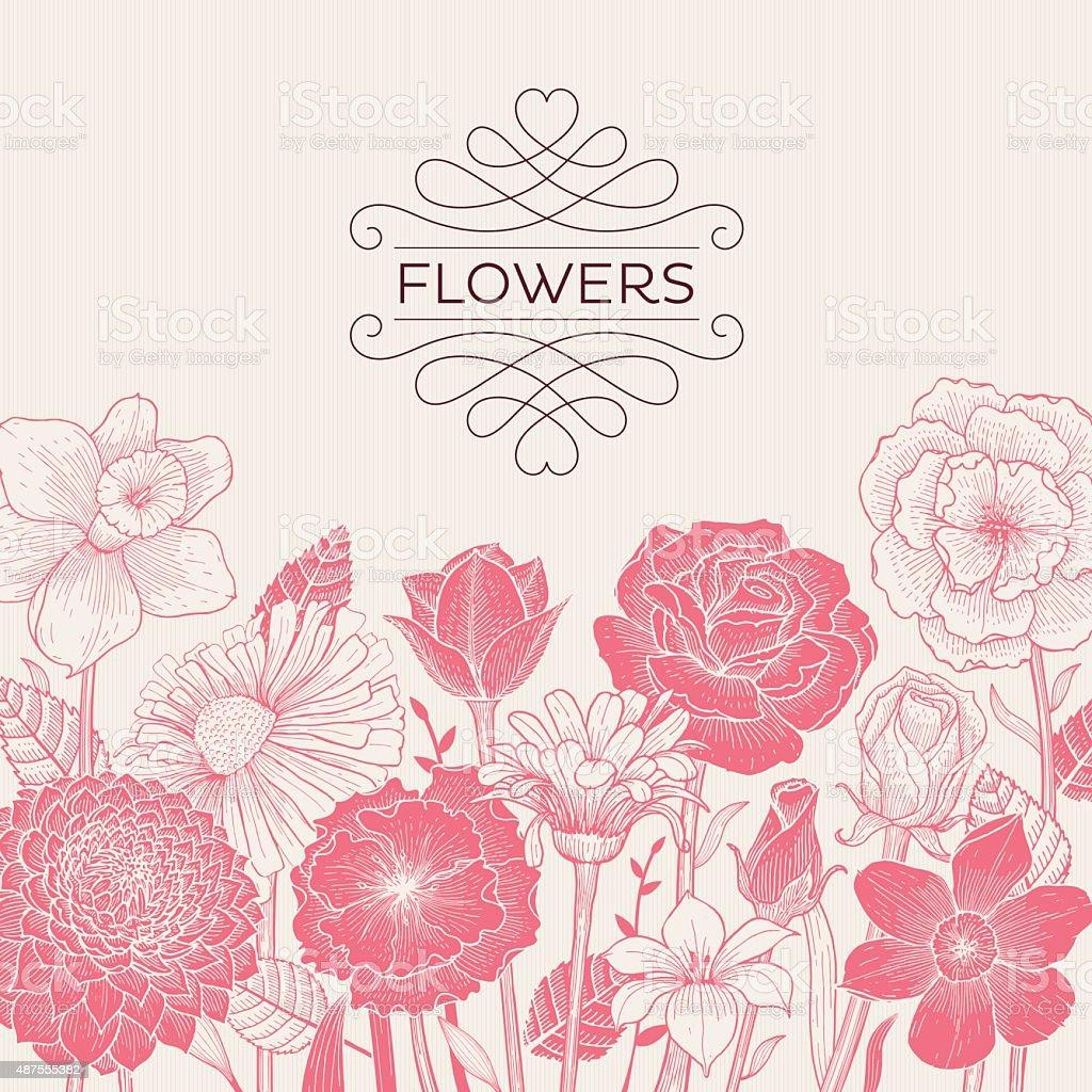 Pink Blooming Flowers vector art illustration