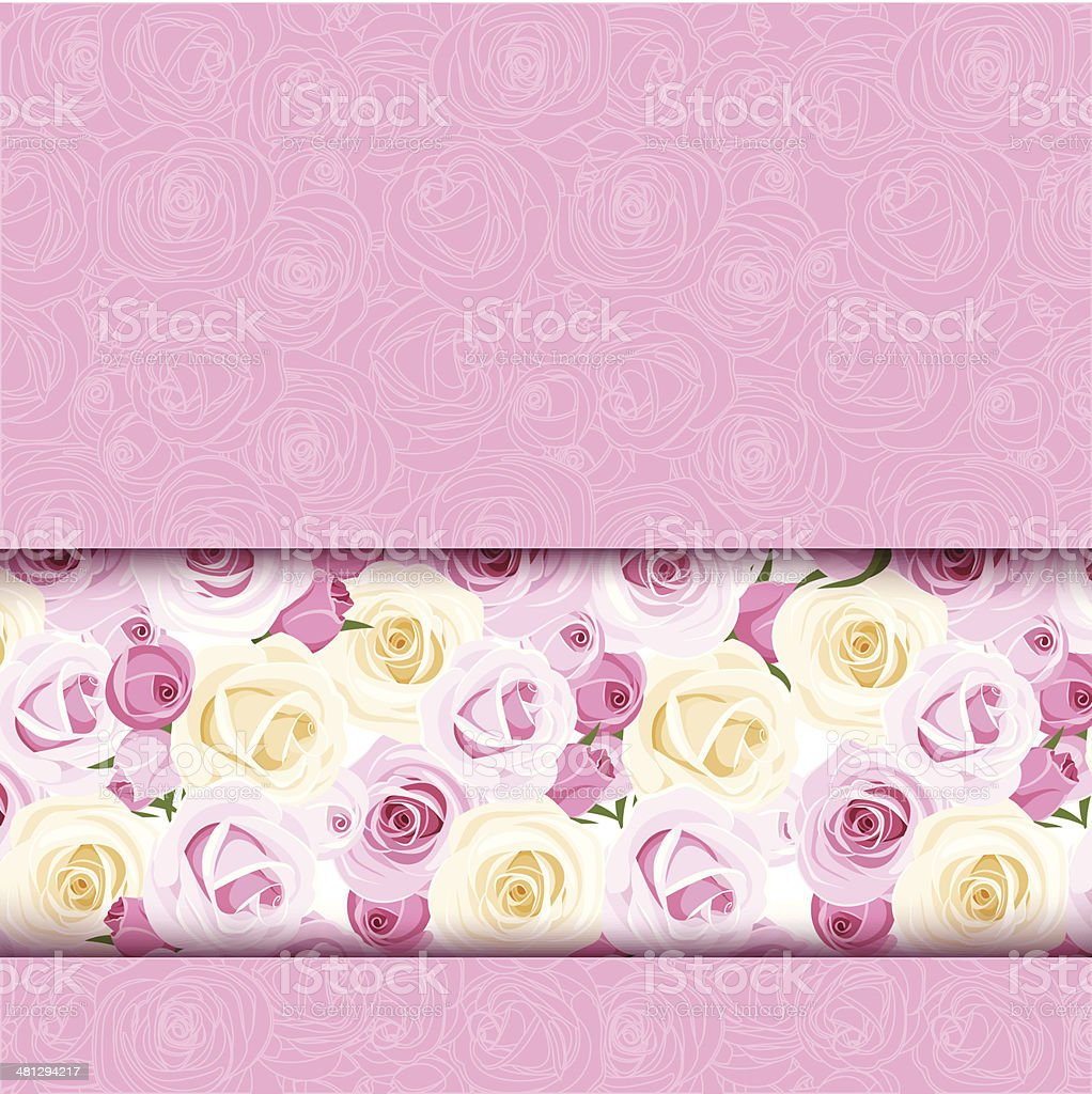 Pink card with roses. Vector eps-10. royalty-free stock vector art