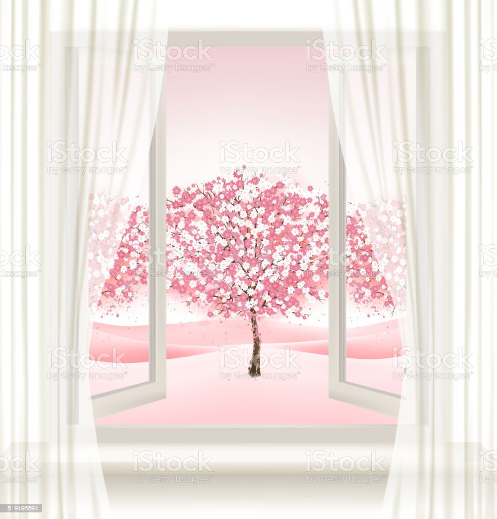 Pink cherry blossom tree view from a window. Vector. vector art illustration