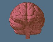 Pink engraving brain in front view on blue BG