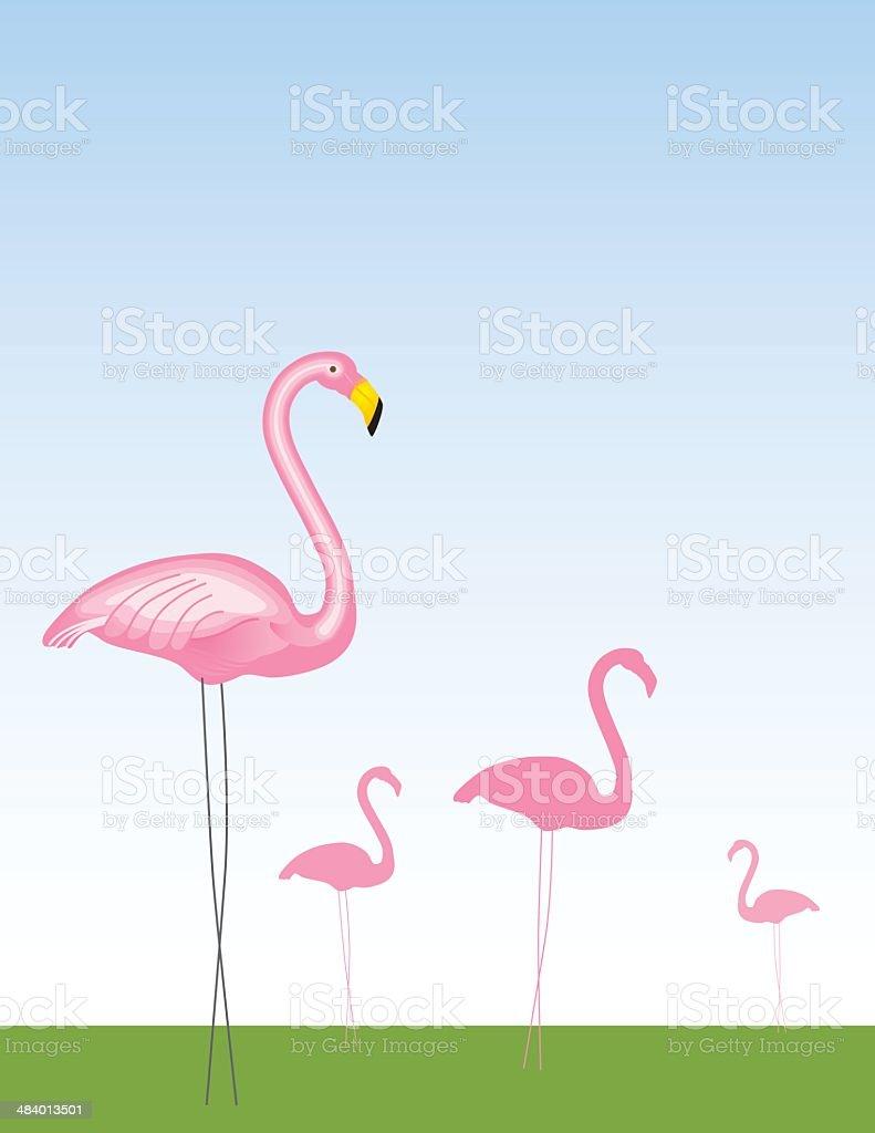 Pink Flamingos royalty-free stock vector art