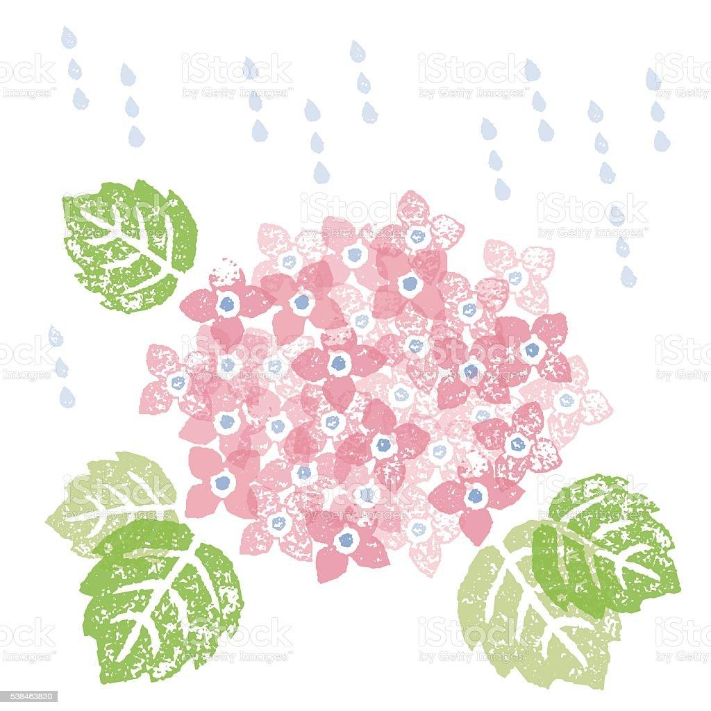 Pink hydrangea in a rainy season vector art illustration
