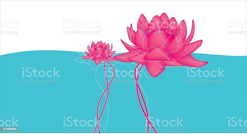 Pink lotus - symbol of birth and growth - vector royalty-free stock vector art