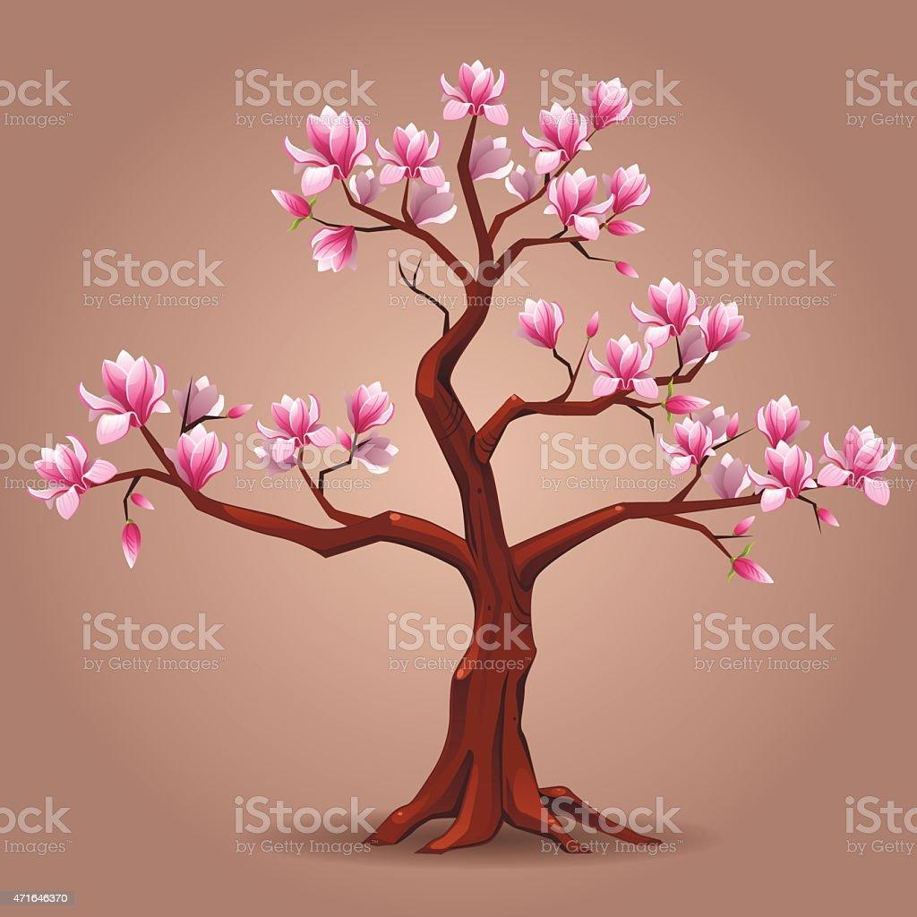 Pink magnolia tree vector art illustration