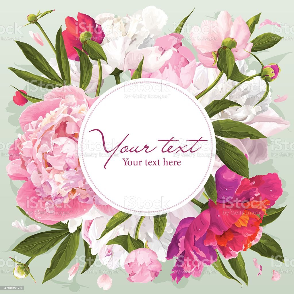 Pink, red and white peony greeting card vector art illustration