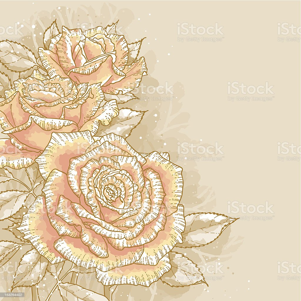 Pink roses on toned background royalty-free stock vector art