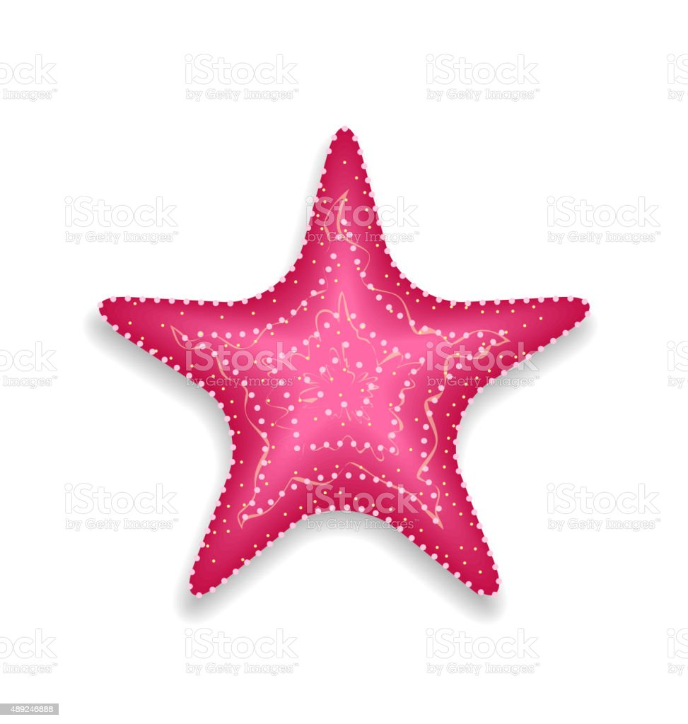 Pink starfish isolated on white background vector art illustration