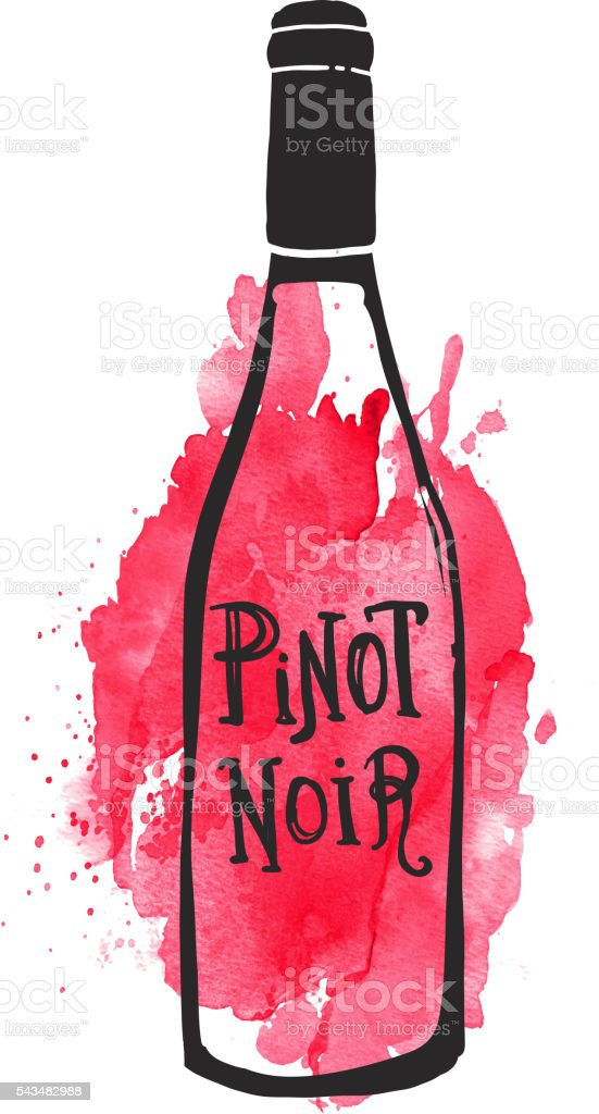 Pinot Noir Wine bottle label hand lettering design on watercolor vector art illustration