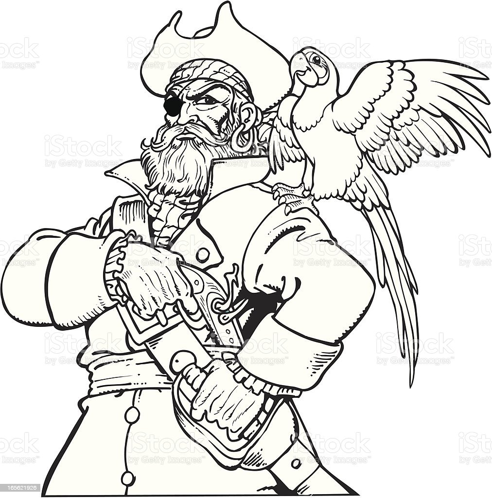 pirate with parrot stock vector art 165621926 istock