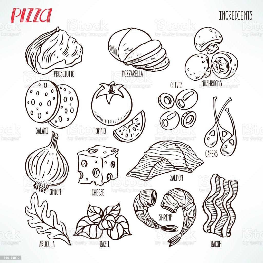 pizza sketch ingredients vector art illustration