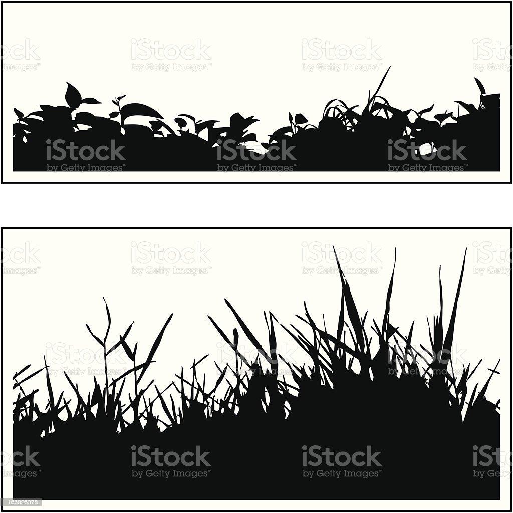 Plant border 02 vector art illustration