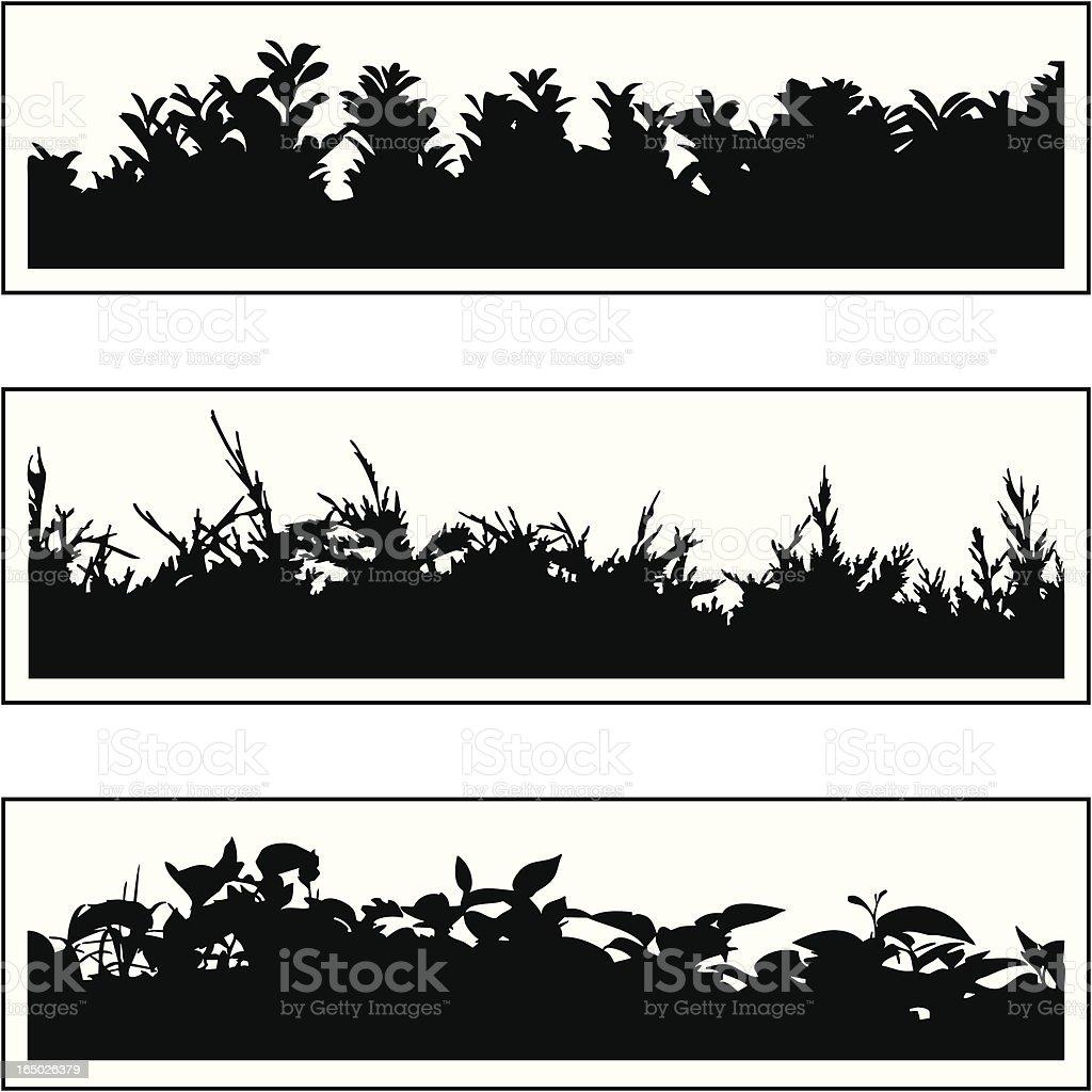 Plant border 03 vector art illustration