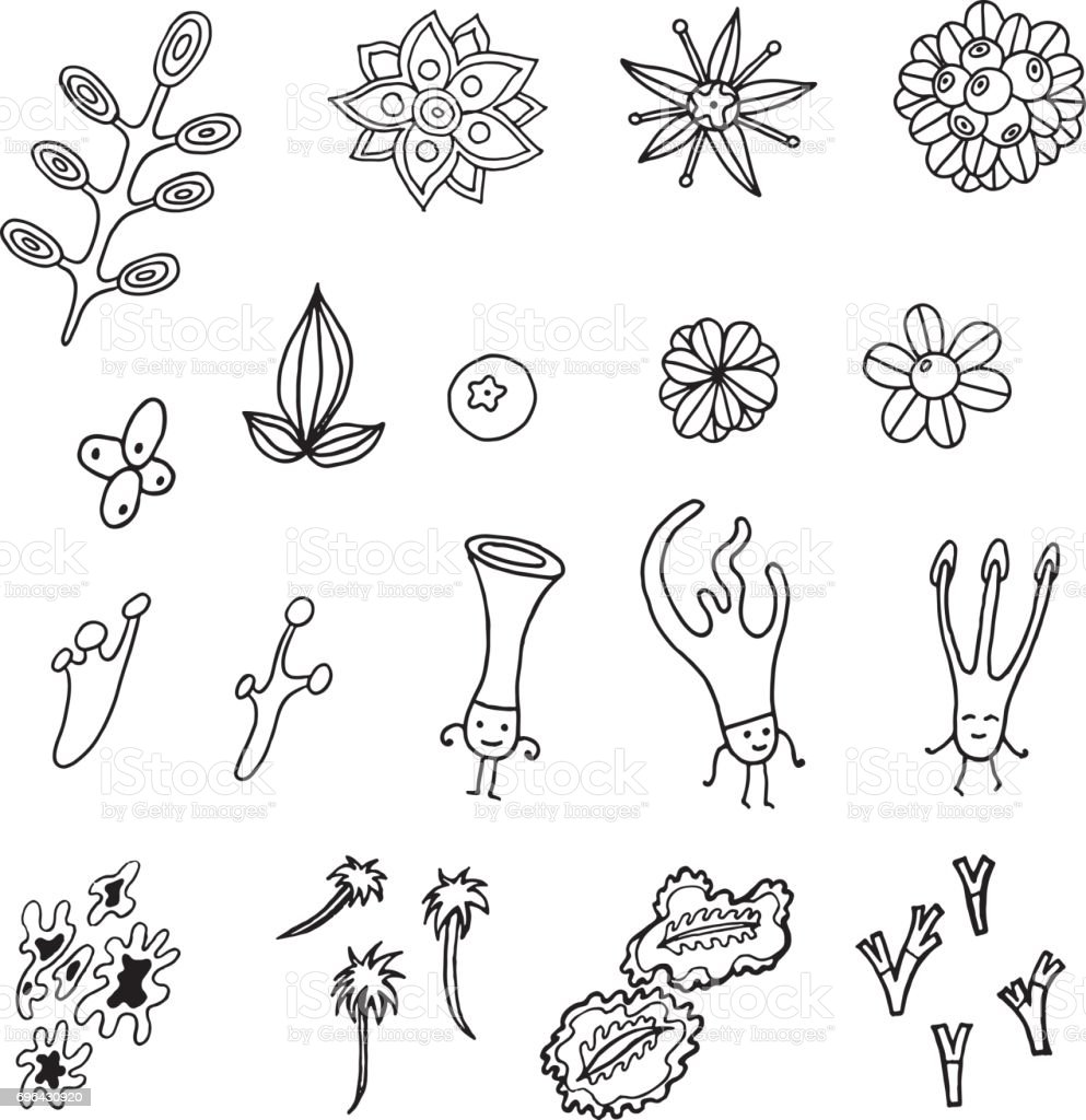 Plant element collection. Vector set with floral details and cartoon moss characters. Art for design, decor, coloring page and book. vector art illustration
