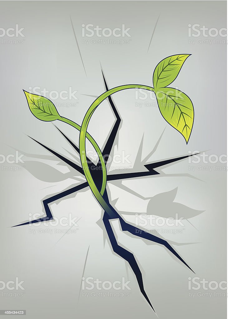 plant growing in crevice vector art illustration