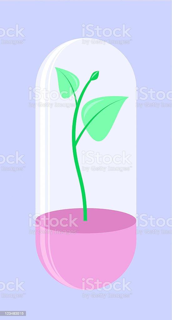 Plant In Vitro vector art illustration