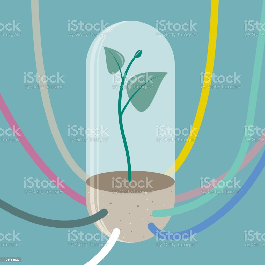 Plant In Vitro With Feeding Tubes vector art illustration