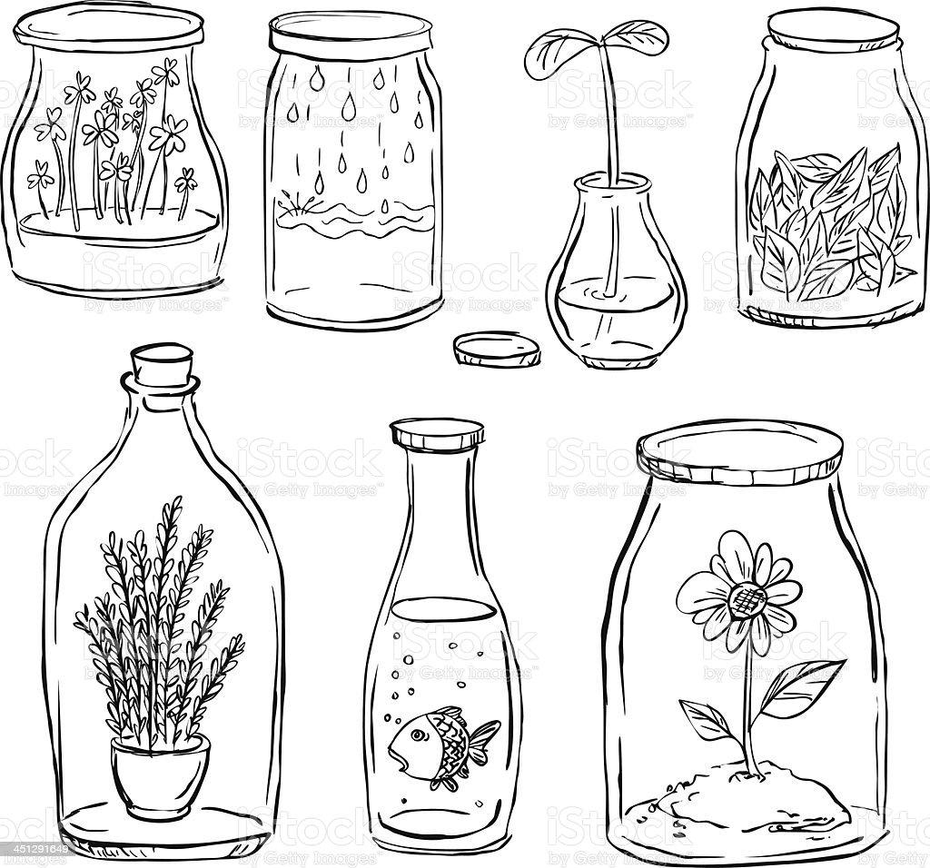Plant inside bottle royalty-free stock vector art