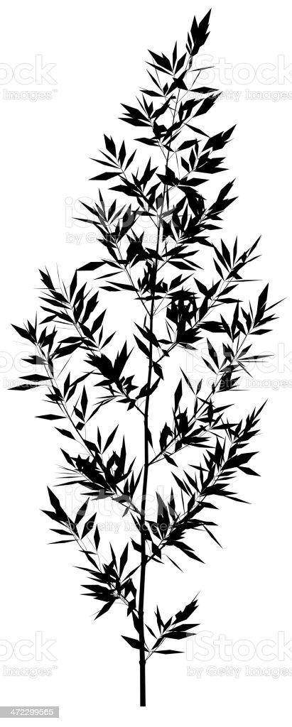 plant vector royalty-free stock vector art