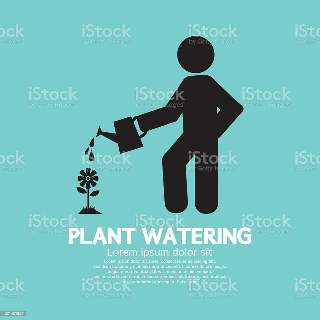 Plant Watering With Watering Can Vector Illustration vector art illustration