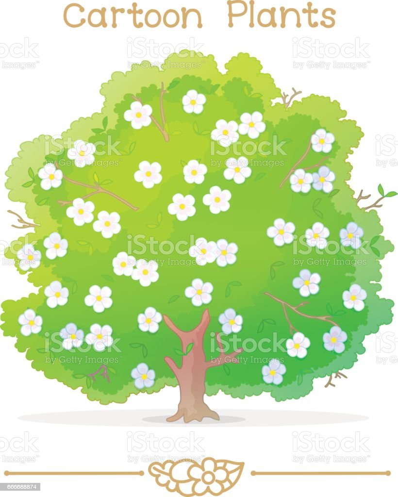 Plantae series cartoon plants: blooming tree vector art illustration