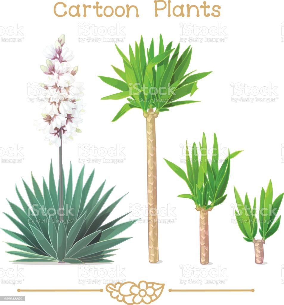 Plantae series cartoon plants: blooming yucca vector art illustration