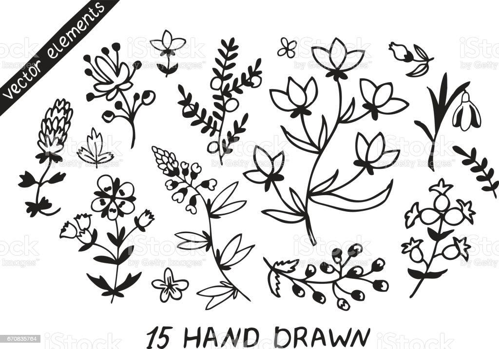 Plants and flowers set. vector art illustration