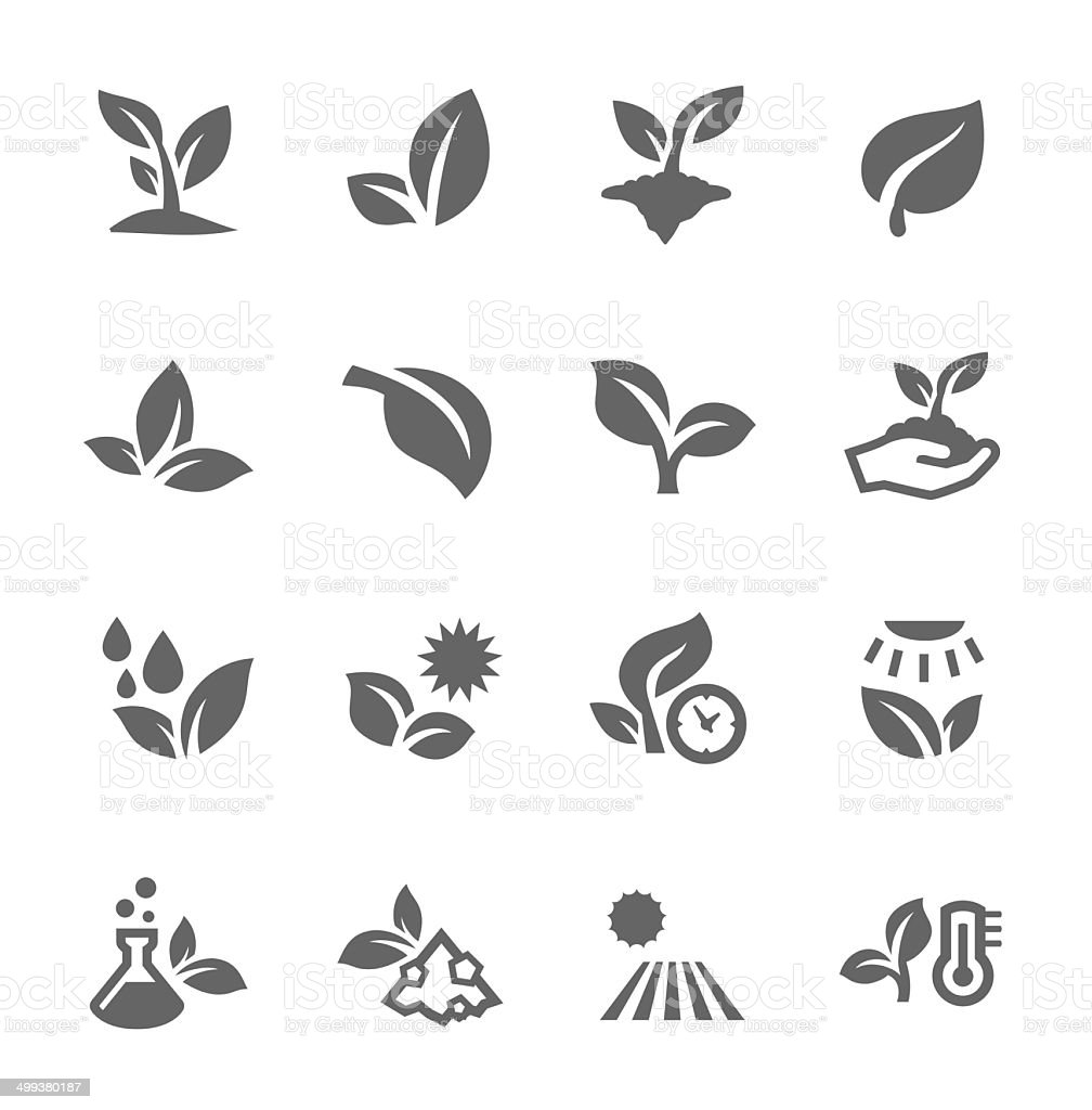 Plants icons vector art illustration