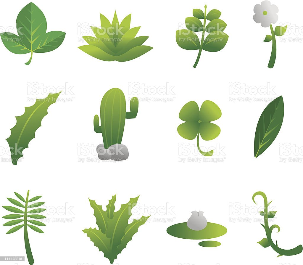 Plants Nature Set vector art illustration