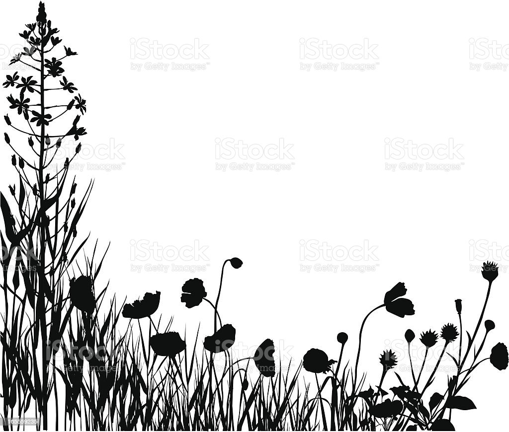 Plants silhouettes royalty-free stock vector art
