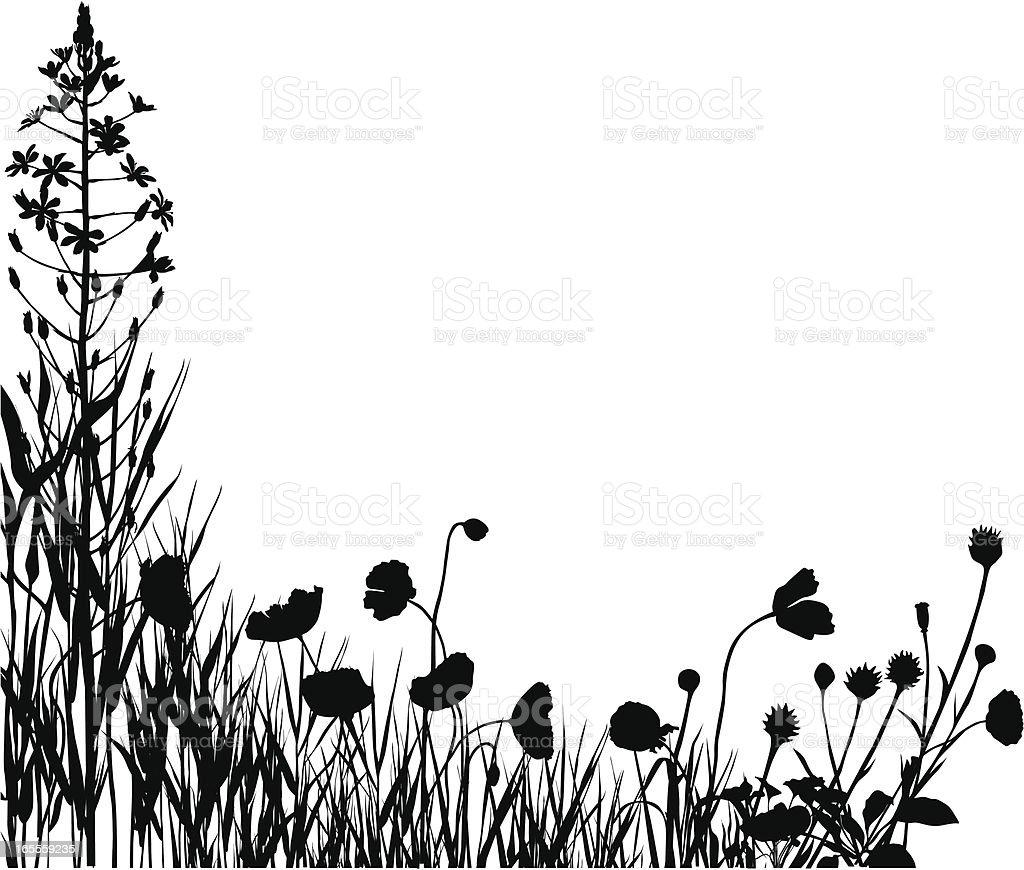 Plants silhouettes vector art illustration