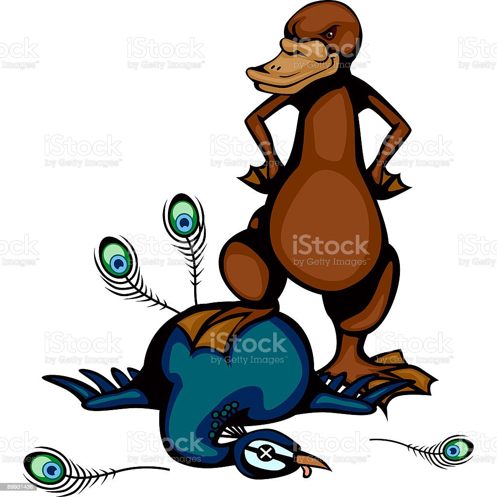 Platypus vs Peacock vector art illustration