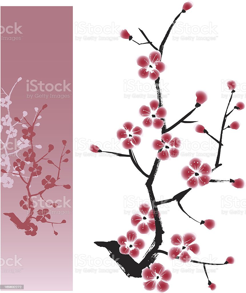 Plum Blossom Painting royalty-free stock vector art