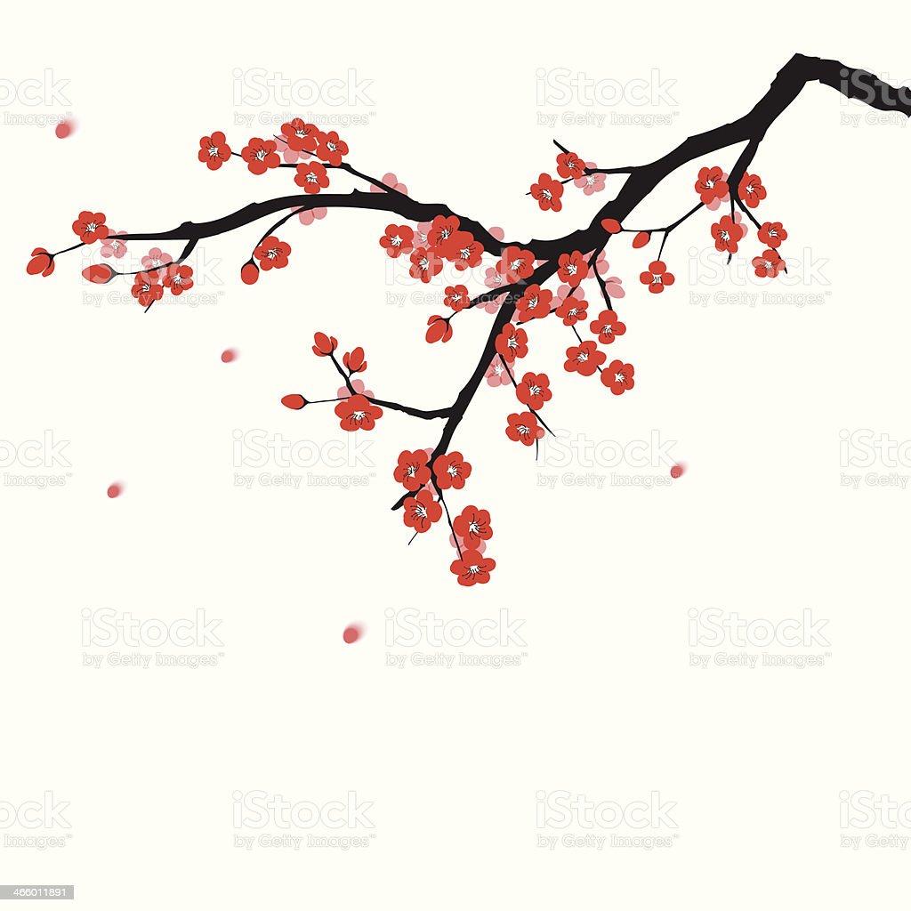 Plum blossom vector art illustration