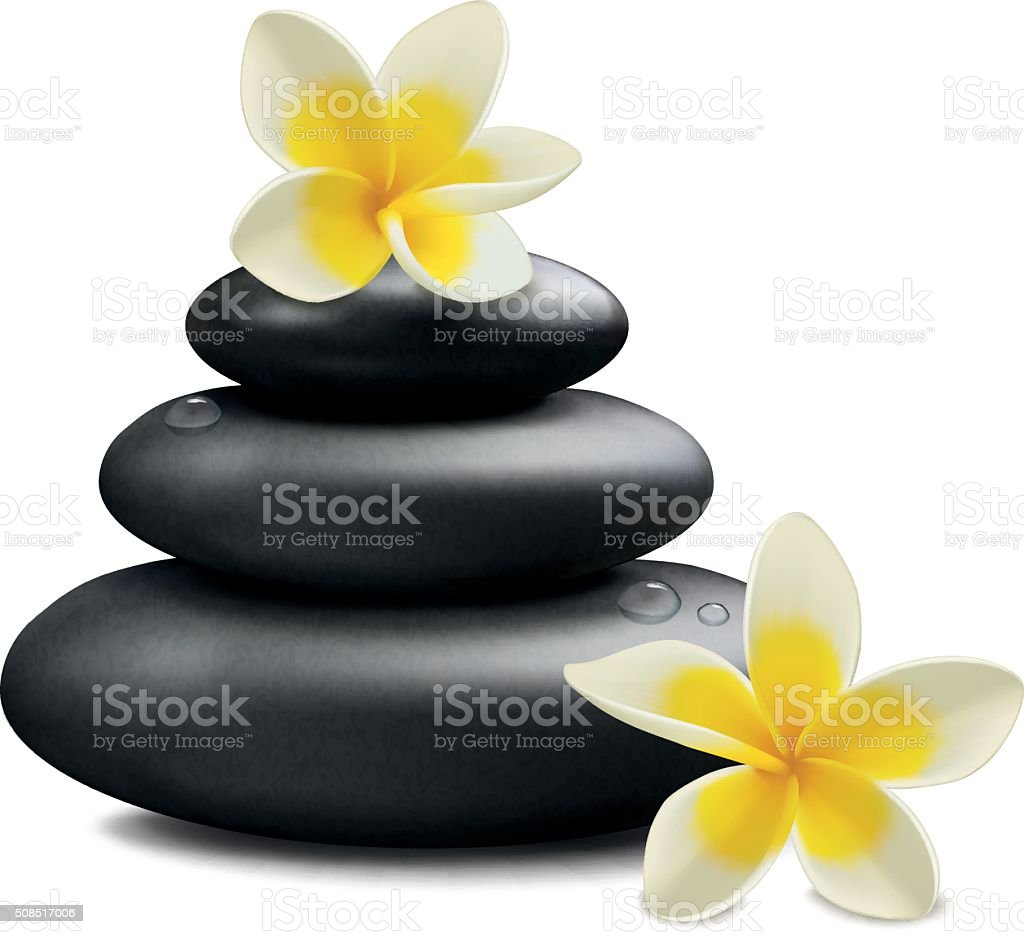 Plumeria flowers and zen stone vector art illustration
