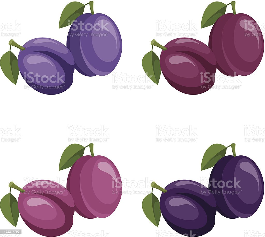 Plums. Vector illustration. royalty-free stock vector art